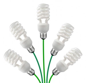 Green Ideas - Saver Bulbs and Cables Isolated